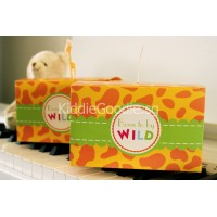 Giraffe Goodie Box