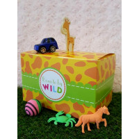 Terrific Toys Pack
